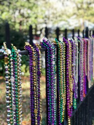Infused with color... a timeless classic.  Enjoy these festive colorful New Orleans Mardi Gras beads hanging on anwrought-iron fence during a Carnival parade on historic St. Charles Ave.