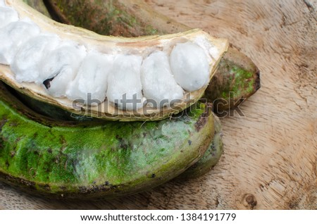 Inga edulis fruits. It is call ice cream bean, guaba, joaquiniquil, cuaniquil or guama; depending on the place. Stock photo ©