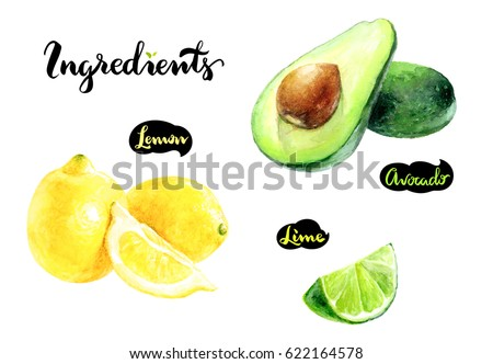 Ingredients kitchen watercolor set. Avocado, lemon, lime watercolor hand draw illustration isolated on white background.