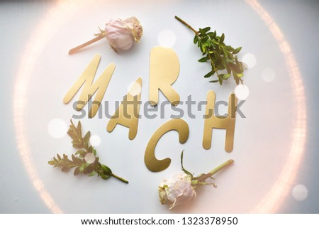 Inscription in gold letters on a white background, March 8, March. With a white rose and twigs. Women's day, romantic card, romantic background. Female background.