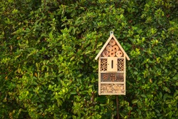 Insect hotel in a green hedge gives protection and a nesting aid to bees and other insects.Insect hotel in a green hedge gives protection and a nesting aid to bees and other insects.