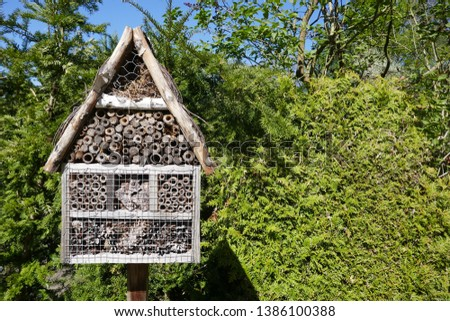 Insect hotel, insect refuge in the garden in front of a green hedge #1386100388