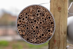 insect house closeup, manmade structure to provide shelter for insects