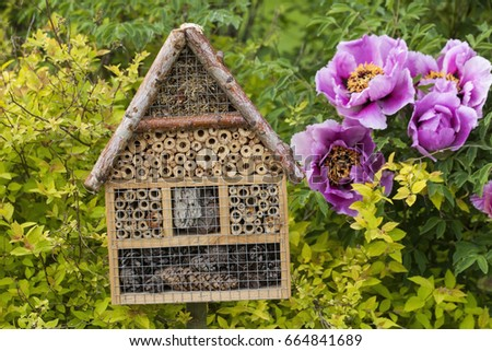 Insect house in a summer garden #664841689