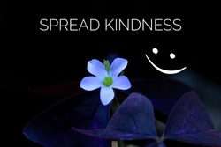 Inspirational motivational quote - Spread kindness. With a beautiful single flower blooming on black background with an happy smiling face emoticon. Kindness inspiration words concept with nature.