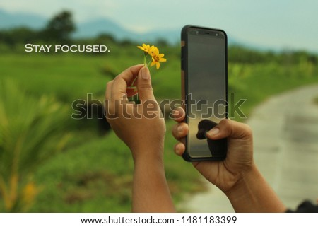 Inspirational motivational quote - Stay focused. With one human hand holds little yellow flowers and the other hand holds a smartphone. Hand phone photographer in life focus concept. #1481183399