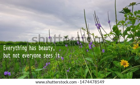 Inspirational quote - Everything has beauty, but not everyone sees it. With nature green grass and flowers background under blue gloomy sky.                         #1474478549