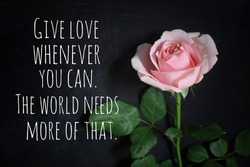 Inspirational quote - Give love whenever you can. The world needs more of that. With single pink rose on black background. Love, care and kindness concept.