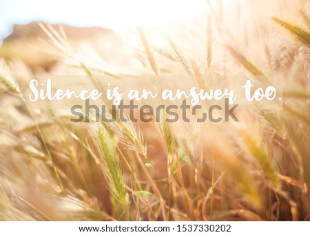 Inspirational Quote: Silence is an answer too
