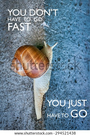 Inspirational quote with words you don't have to go fast you just have to go Large snail crawling on a stone wall