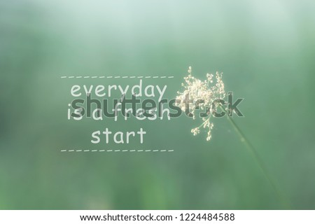 Free Photos Life Quote And Inspiration Quote On Flower Background
