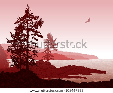 Inspiring illustration depicting a scene from west coast of Vancouver Island