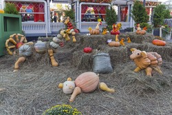 Installation - sculptures of animals and birds, made from ripe pumpkins. Festival