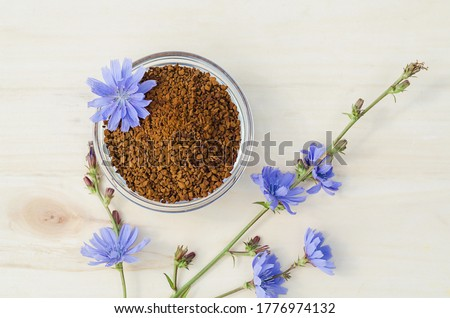 instant freeze dried granules from chicory root on wooden background. dry powder and fresh blue flowers. natural coffee substitute. drink for children. Foto stock ©