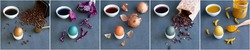 Instructions how to color easter eggs with natural dye collage. Grey background. Brown coffee, blue red cabbage, orange onion skin, grey carcade and yellow turmeric