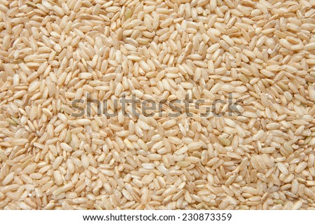 Integral uncooked brown rice texture