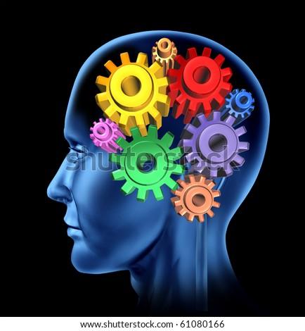 intelligence brain function