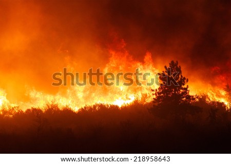 Intense flames from a massive forest fire. Flames light up the night as they rage thru pine forests and sage brush. The Carlton Complex wild fire was Washington state\'s largest fire in history.