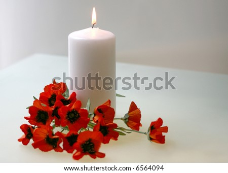 Intentionally soft focus Flanders poppies and candle to commemorate Remembrance, Armistice, Poppy, Veteran's Day