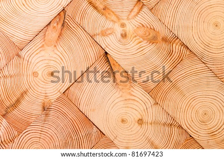 interesting cross-section of a tree, laid in the form of parquet