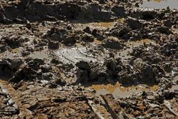Interesting mud background. Muddy soil texture.
