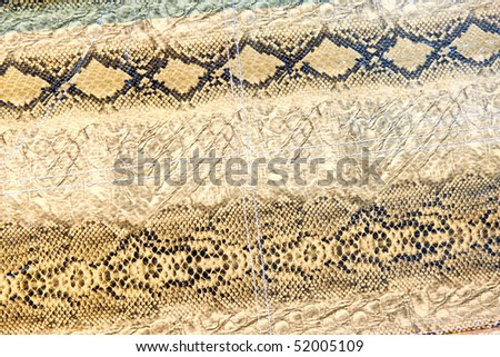 Interesting texture of several different snake skins