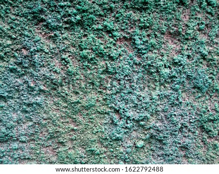 interesting wall texture has been painted in green