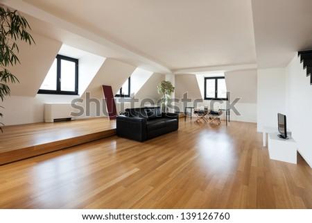 Interior beautiful loft hardwood floor living room