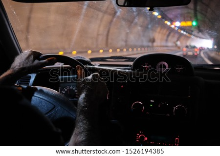 interior car view of a old senior man 60s 70s driving along the city tunnel with lights