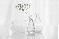 Interior decoration, flower in vase on white background, naturemort, minimalism