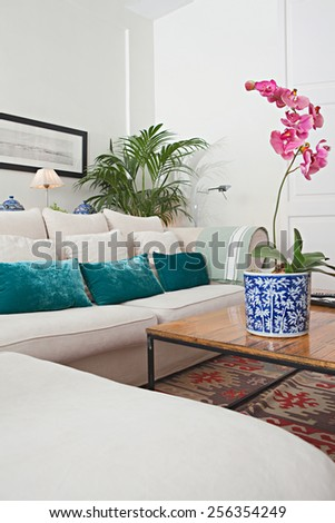Interior design detail view of a home living room with a white sofa with cushions, plants and flowers, interior view. House indoors with carpets and character design. Tranquil aspirational home space.