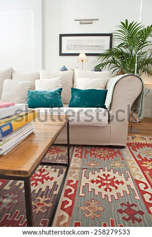 Interior design lifestyle detail of a home living room with white sofa and plants, interior view. House indoors with carpets and picture frame. Aspirational lifestyle home space still life.