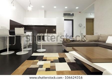 Interior designer living room with kitchen