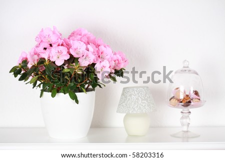 Interior detail with different flowers in white tone