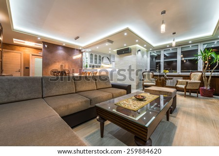 Interior of a luxury  #259884620