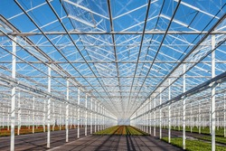 Interior of a partly empty greenhouse against a blue sky