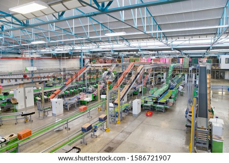 Interior Of Empty Fruit Processing And Packaging Plant