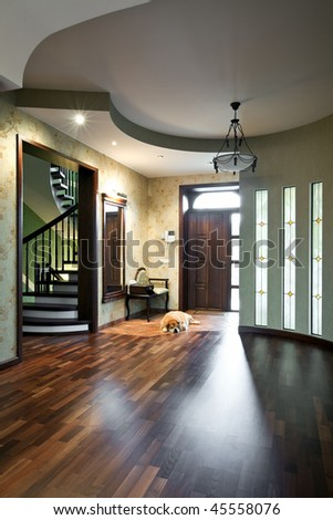 Interior of entrance hall in a new house with sleeping dog