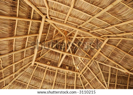 Interior Of Mexican Palapa, Details Of Thatched Roof Structure