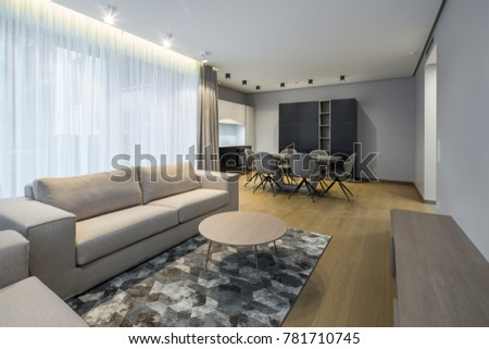 Interior of the living-studio in the apartment. Room, kitchen, furniture, sofa. #781710745