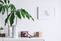 Interior of white home space with mock up poster frame, tropical leaf  and vintage camera. Scandinavian white cupboard concept.