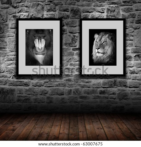 interior room with gray stone wall and 2 pictures - mandrill and lion - stock photo