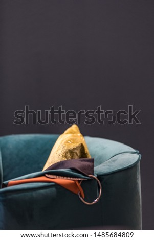 Interior velvet chique lounge chair Foto stock ©