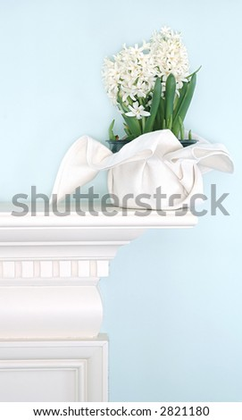 interior with white hyacinth