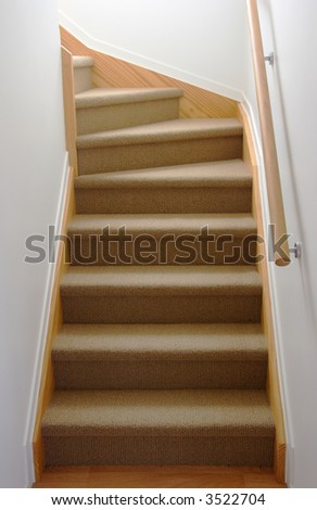 Internal stair case in carpet - stock photo