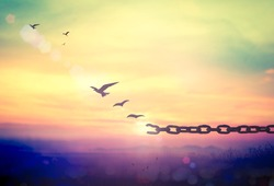 International day for the remembrance of the slave trade and its abolition concept: Silhouette of bird flying and broken chains at beautiful mountain and sky autumn sunset background