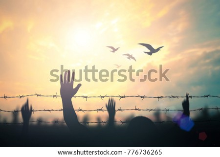 International migrants day concept: Silhouette refugee hands raising and barbed wire on autumn sunset background #776736265