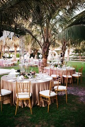 International Wedding outdoor celebration party under palm trees. Served tables on green area in hotel. Landyard. Beige and pink colors. Close-up and wide angle.
