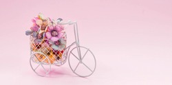 International Women's Day. Banner, flyer, postcard small bicycle with a bouquet of flowers. Flowers and a vintage bicycle on a pink background. Flower delivery. Online order from a flower shop.