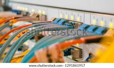 Internet wires are connected to the central router interfaces. There are many optical patchcards in the modern data center server room. Telecommunications cables are connected to the main server. #1291861957